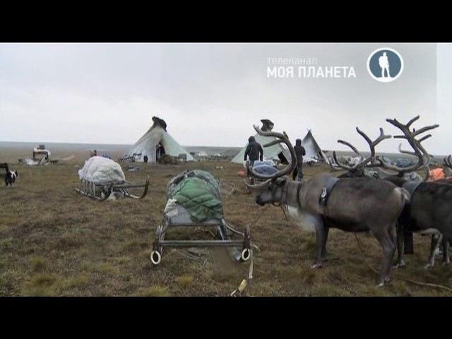30 дней в Арктике с Вилли Хаапасало 05 серия (2016)