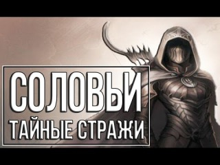 TES: Skyrim Гильдия Воров 4 Соловьи - тайные стражи