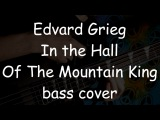 Edvard Grieg - In the Hall of the Mountain King bass cover everyday play #142