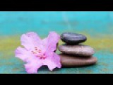 Terry Oldfield - Reiki Harmony -Om Shanti