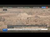 Армия Сирии выбила боевиков с господствующей высоты у Пальмиры