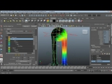 Character Rigging in Maya   0804 Painting skin weights