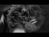 Mujuice - Swan Path (17-01-2014)