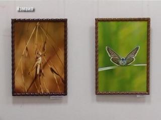 Фотовыставка Руслана Морозова «Эхо природы – 3»