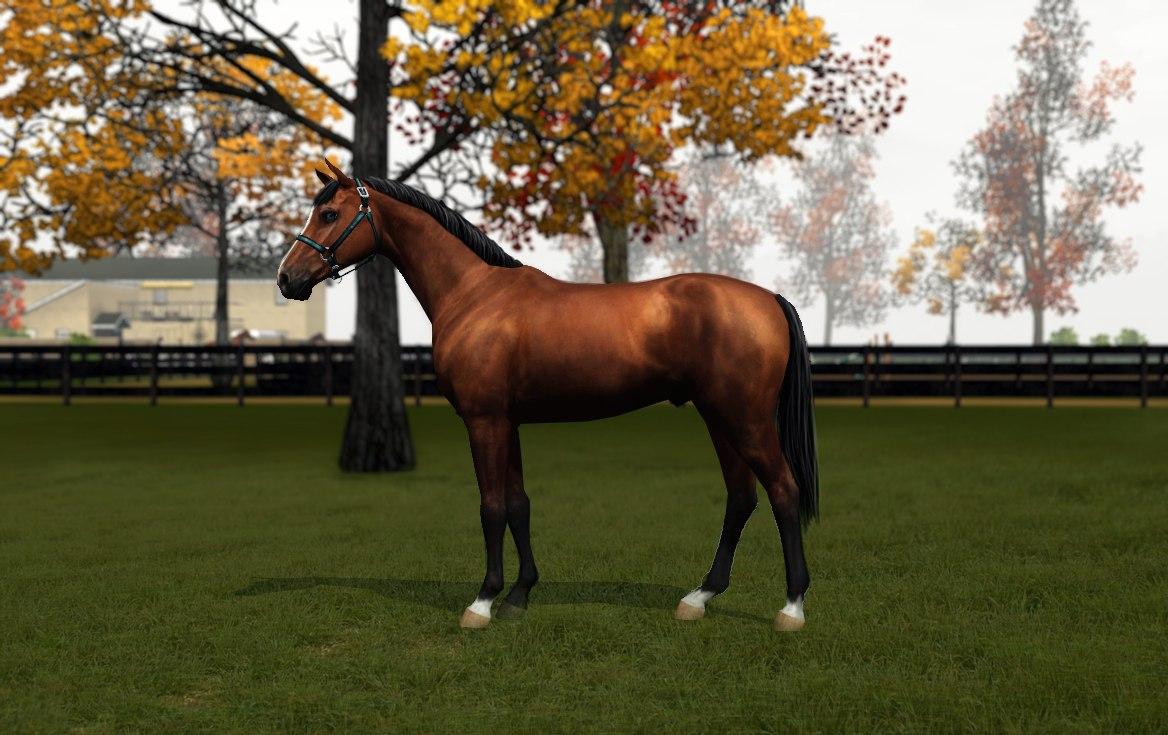 Регистрация лошадей в RHF 2 - Страница 2 LkpsQp540kw