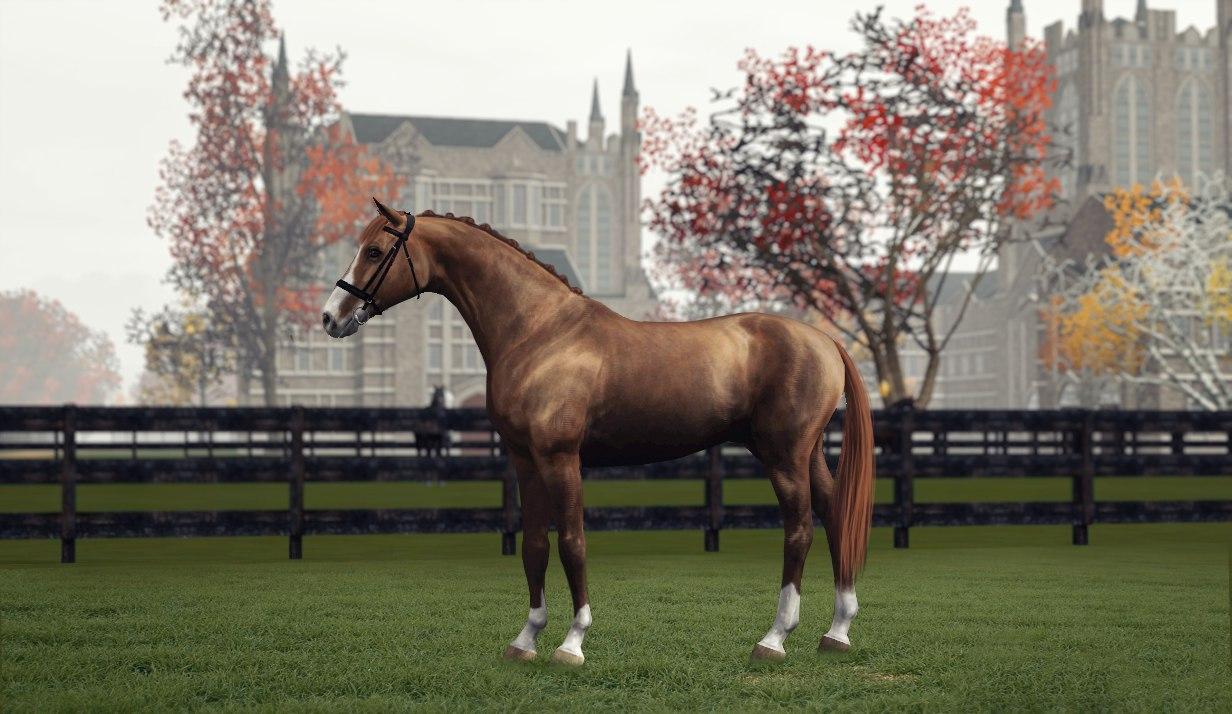 Регистрация лошадей в RHF 2 - Страница 2 3YGKJ2HzBy8