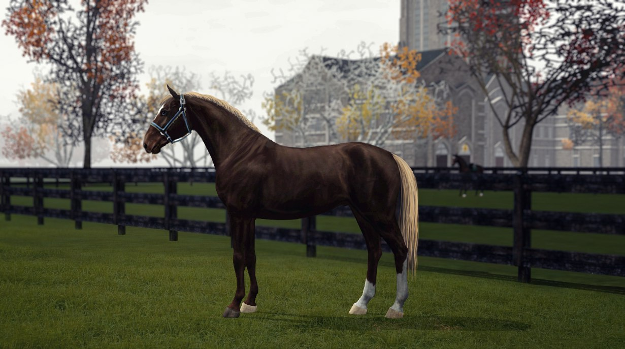 Регистрация лошадей в RHF 2 - Страница 2 8GwNHOymb1k