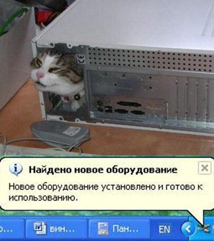 Windows, найдено новое оборудование, прикол