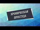 Хроническая простуда [Николай Пейчев, Академия Целителей]