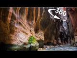 360 тропа НАРРОУС в парке ЗАЙОН Юта США  ПЕРВАЯ В МИРЕ кругосветка 360 ВЛОГ