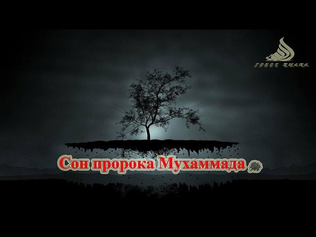 Сон пророка Мухаммада ﷺ [НОВИНКА]