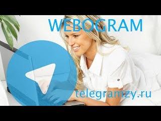 Веб Телеграмм: обзор web версии Telegram | Webogram онлайн и на русском