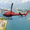 Palubaus Miami