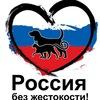 Митинг в Белгороде.