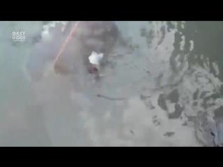 Эффектная рыбалка