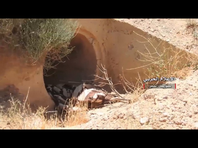 Of the control of the Syrian army on the area of Sawwanah south of Palmyra in the countryside of Homs