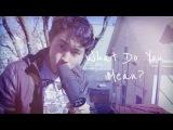 Gene Shinozaki  What Do You Mean  Justin Bieber Cover