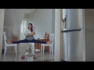 Новый холодильник LG Door-in-Door™- про кота и упущенные возможности