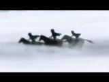Атака титанов ♫ Ветром стать - Максим ♫ Леви и Изабель