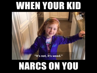 Little Girl Tells Teacher Her Parents Are Growing Weed