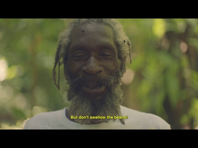 Hitimpulse - I'm in Love with the Coco (Official Video)