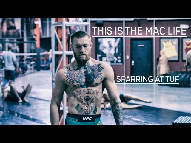 Conor McGregor sparring at The Ultimate Fighter gym in Las Vegas TheMacLife