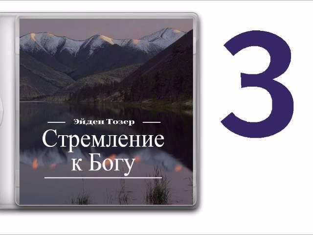 ЭЙДЕН ТОЗЕР - Стремление к Богу (ч.3)
