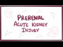 Prerenal acute kidney injury (acute renal failure) - causes, symptoms pathology