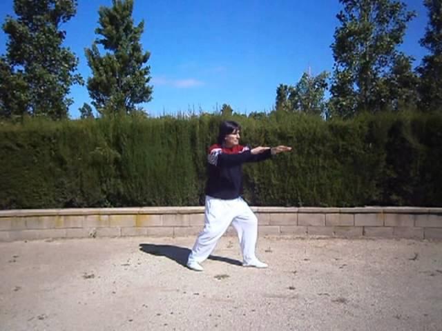 Bian Zhizhong Arte Marcial Taoista para la Salud y la Longevidad 6/8