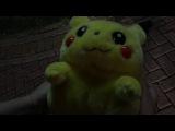 Южный фронт поймал Пикачу! Сочи/ Покемон ГО. Pokemon GO.