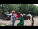 За рукой и сердцем на коне. КК