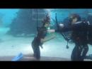 Ариэль в аквариуме часть 2
