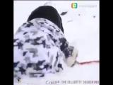 [BRABUS] Собака-диверсант