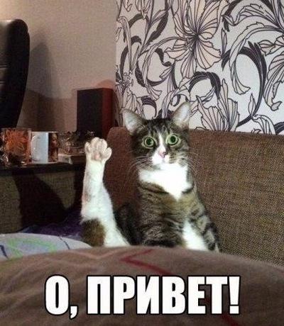 Костя Юсов