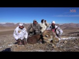Hunting for Marco Polo sheep and Pamir Ibex Tajikistan