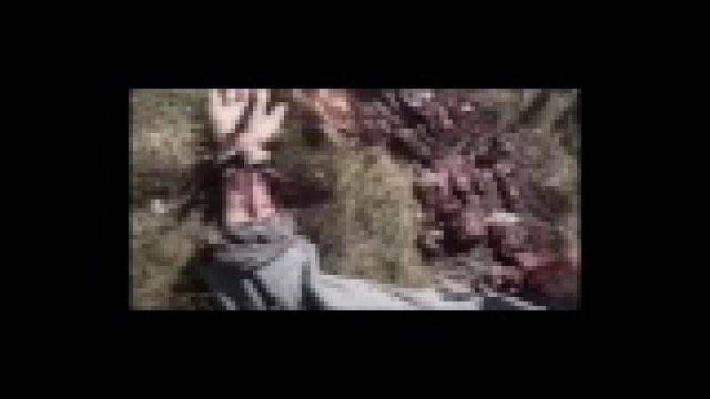 Baker Phonk - Demons Lurk The Graveyard