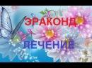 Эраконд Выздоровление через обострение Людмила Амелина