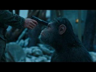 «Планета обезьян: Война» (2017): Трейлер (дублированный) / www.kinopoisk.ru/film/819281/