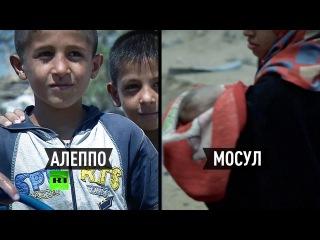Госдеп осуждает действия России в Алеппо, но оправдывает удары США в Ираке благими намерениями