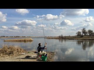 middy 4gs bagging feeder rod 11