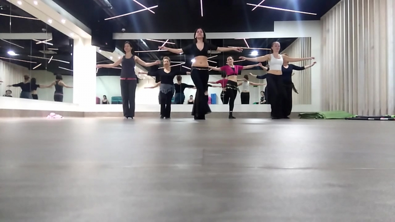 Команда бабуинов во главе с Лейлой
