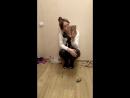 Питомец встречает при возвращении домой прыгает на колени и мурлыкает кот собака