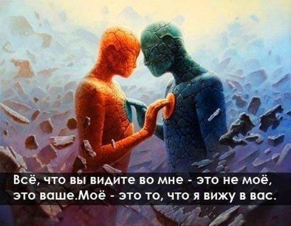 https://cs540100.vk.me/c637121/v637121536/35c94/ZEiS9Qd3S0o.jpg