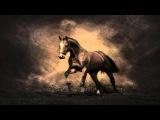 Oliver Shanti &amp Friends - Crazy Horse