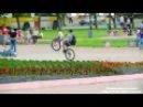 Парень лихо едет по бордюру с одной рукой на заднем колесе велосипеда