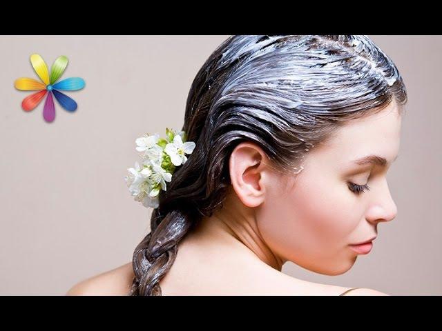 Маска для роста волос: плюс 10 см за 3 месяца – Все буде добре. Выпуск 916 от 17.11.16