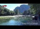 Olimpos, Çıralı Sahilleri Ve Olimpos Çayı, Kurbağa Cenneti, Ekosistem Doğası