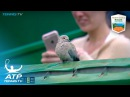 Funniest moments: Djokovic, Nadal, Goffin...and *that* bird! | Monte-Carlo Rolex Masters 2017