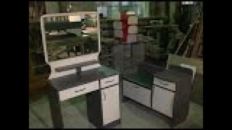 Семейный мебельный бизнес в Сосновом Бору получил областную поддержку