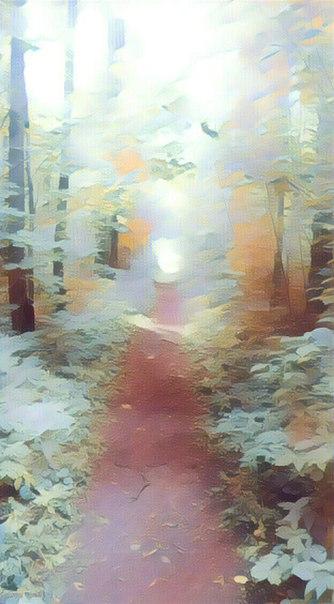 фото из альбома Алексея Тихонова №14